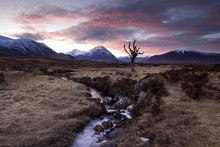 Winter View Of Rannoch Moor At...