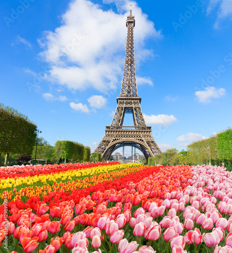 Poster de jardin Paris Eiffel Tower in sunny day with blooming spring flowers, Paris, France