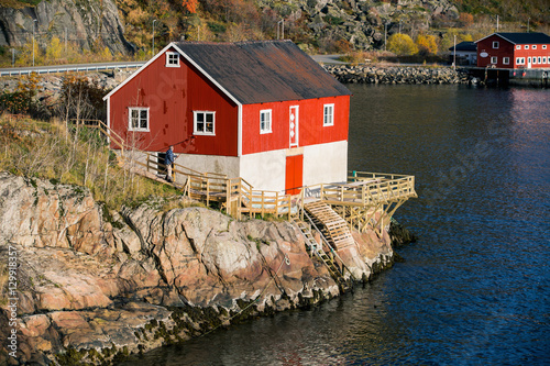 Poster Scandinavie The man paints a house in red. Traditional wooden house in Scandinavia, sea coast, bay.