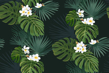 Seamless Pattern With Exotic Tropical Leaves And White Flowers On Black Background. Vector Background. Frangipani.