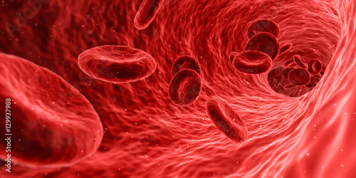 Fotografie, Obraz  Sang et artère en microbiologie