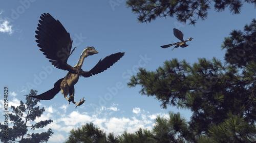 Archaeopteryx birds dinosaurs flying - 3D render Fototapet