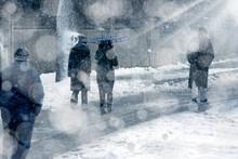 People Walking Under Snow