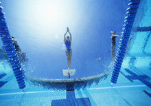 View Of Female Swimmer Diving ...