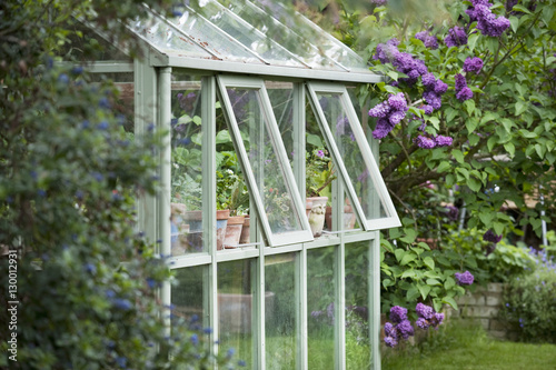 Valokuvatapetti Greenhouse in back garden with open windows for ventilation