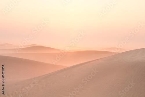 Photo  Quiet moment in desert during sunrise. Dubai, UAE.