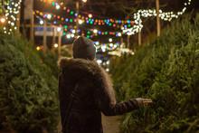 Girl Picking Christmas Tree