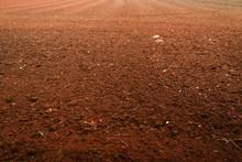 Soil Preparation For Vegetable...
