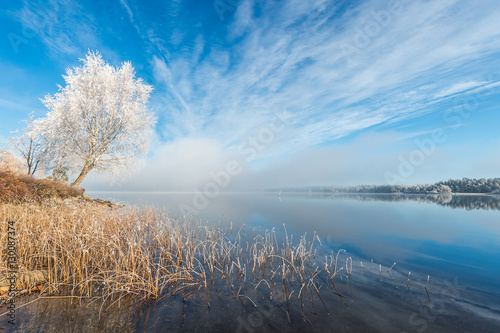 Foto op Aluminium Blauw Winter Frost Tree Lake with Blue sky