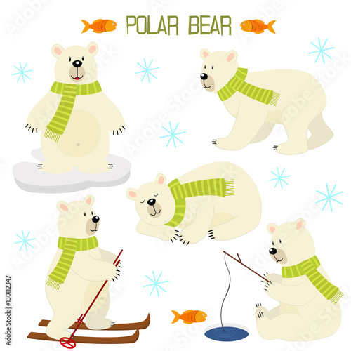 set of isolated polar bear - vector illustration, eps Canvas Print