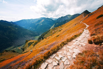 Panel Szklany Góry Fantasy and colorfull nature landscape. Carpathia.