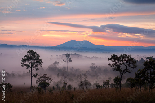 Fotobehang Zwavel geel Misty morning sunrise at Thung Salang Luang National Park Phetch