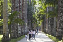 People At Botanical Gardens (J...