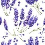 Wildflower lavender flower pattern in a watercolor style isolated. - 130178325