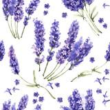 Wildflower lawendowy kwiatu wzór w akwarela stylu odizolowywającym. - 130178325