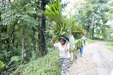 Naga Tribeswomen Carrying Load...