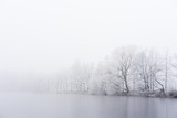 Winter fog on the bank of icy lake. Frozen trees. - 130184534