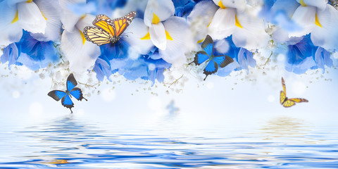 Obraz na SzkleAmazing butterfly fairy of flowers, hydrangeas and iris.