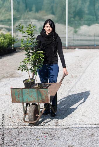 Fotografie, Obraz  La contadina nel vivaio