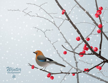 Christmas Card With Bird Sitting On Bare Branch