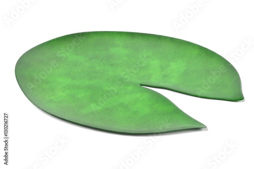 Canvas-taulu realistic 3d render of water lily