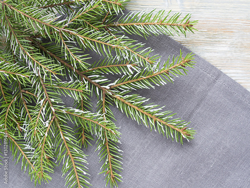 Garden Poster Roe Christmas background with fir branch.