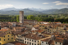 View Over City To San Frediano From Atop Torre Guinigi, Lucca, Tuscany