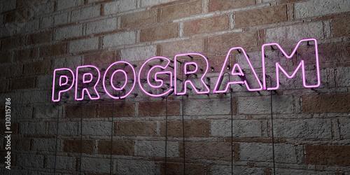 Fotografie, Obraz  PROGRAM - Glowing Neon Sign on stonework wall - 3D rendered royalty free stock illustration