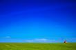 Leinwandbild Motiv minimalism, one house in wheat field, blue sky