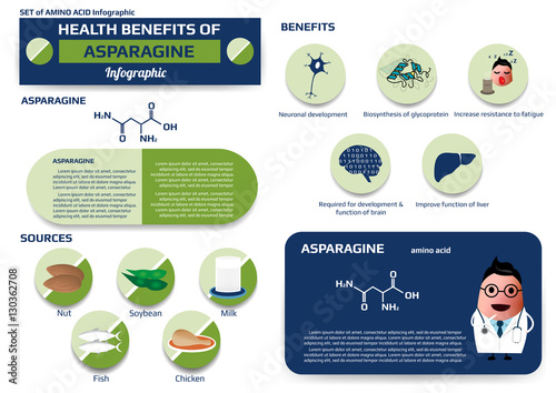 Health benefits of asparagine (amino acid) infographic,supplement and nutrition Wallpaper Mural