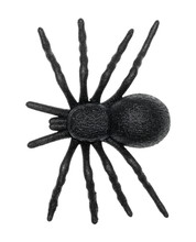 Plastic Toy Spider Top View Is...