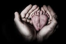 Newborn Baby Feet In Dad's Han...