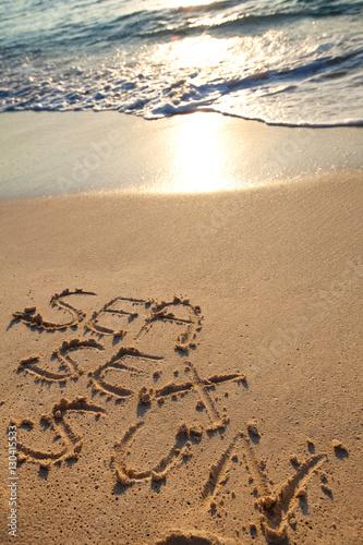 Fotografie, Obraz  mots sea sex sun écrits en anglais sur le sable sur la plage