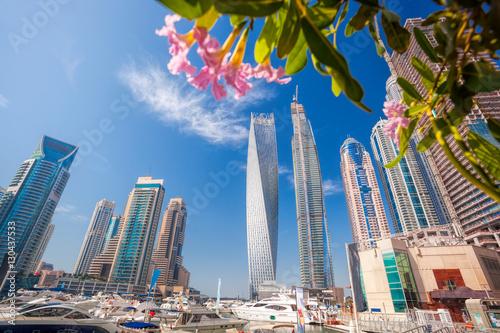 Dubaj Marina z kwiatami w Dubaj, Zjednoczone Emiraty Arabskie