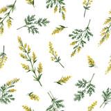 Akwarela wektor wzór z piołun kwiaty i gałęzie. - 130477747