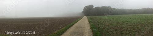 Fotografie, Obraz  farmland on a misty day
