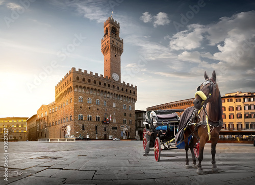 Aluminium Prints Florence Horse on Piazza della Signoria