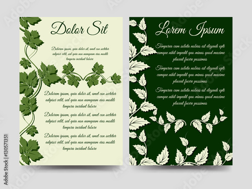 Floral Brochure Flyers Template Design With Green Branches Vector