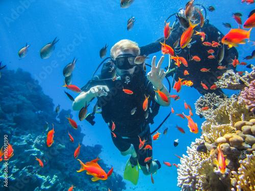 Obraz na plátně Красивый коралловый риф в Красном море. Дайвинг в Египте