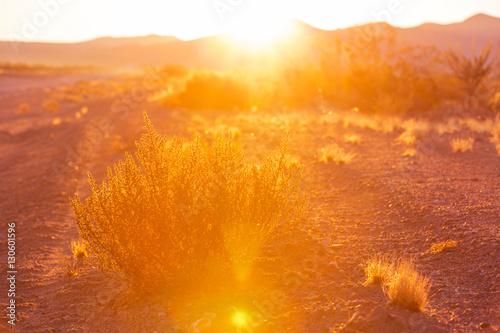Mountains on sunset #130601596