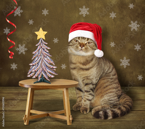 Cook Cat In The Santa Hat Is Sitting At The Table There Is A