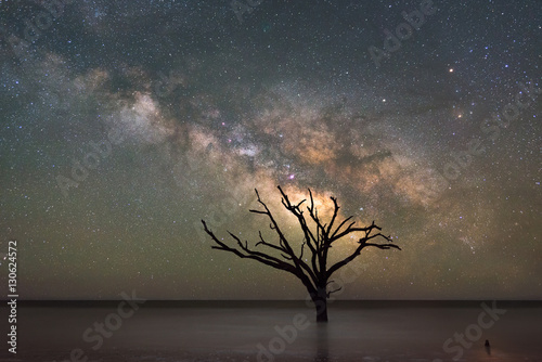 Botany Bay Beach under the  Milky Way Galaxy Wallpaper Mural