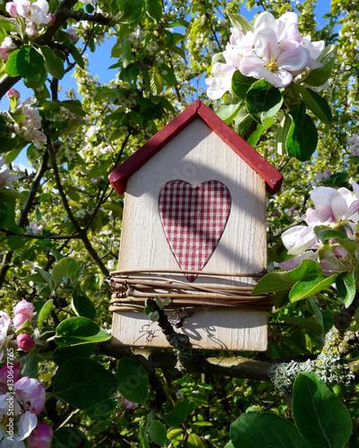 Vogelhaus in einem blühenden Apfelbaum Canvas Print