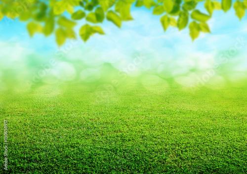 Garden Poster Spring spring grass background