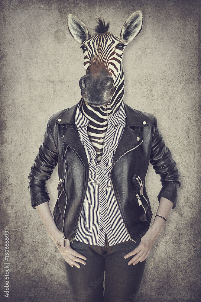 Zebra in clothes. Concept graphic in vintage style.