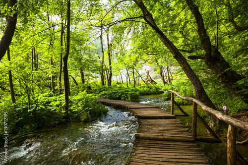 Poster de jardin Rivière de la forêt Plitvice lakes park in Croatia