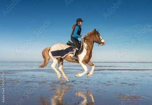 Papiers peints Equitation cavalière au galop sur la plage