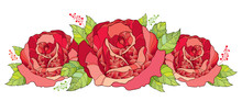 Vector Illustration With Outline Red Rose Flower And Green Foliage Isolated On White Background. Floral Elements With Open Roses And Leaves In Contour Style For Summer Design. Horizontal Composition.