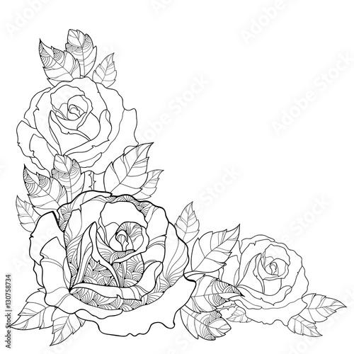Set Of Black Flower Design Elements From My Big Floral: Vector Illustration With Outline Rose Flower And Foliage