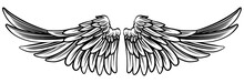 Spread Pair Of Angel Or Eagle Wings